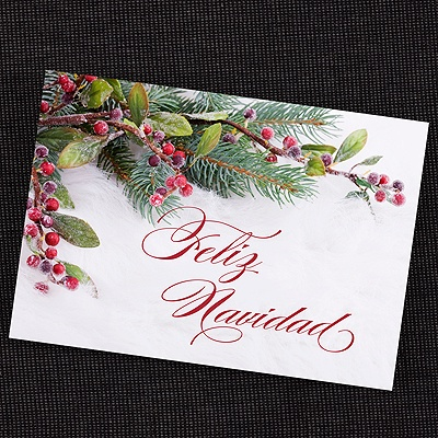 Spanish Christmas Cards - Feliz Navidad Cards Hispanic
